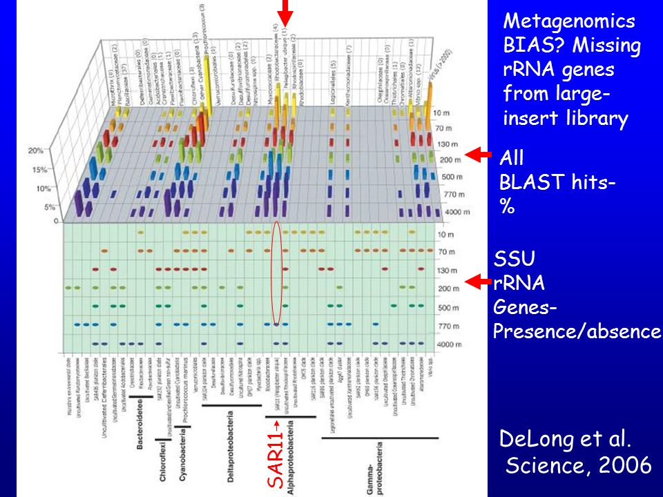 DeLong et al. Science, 2006 Metagenomics