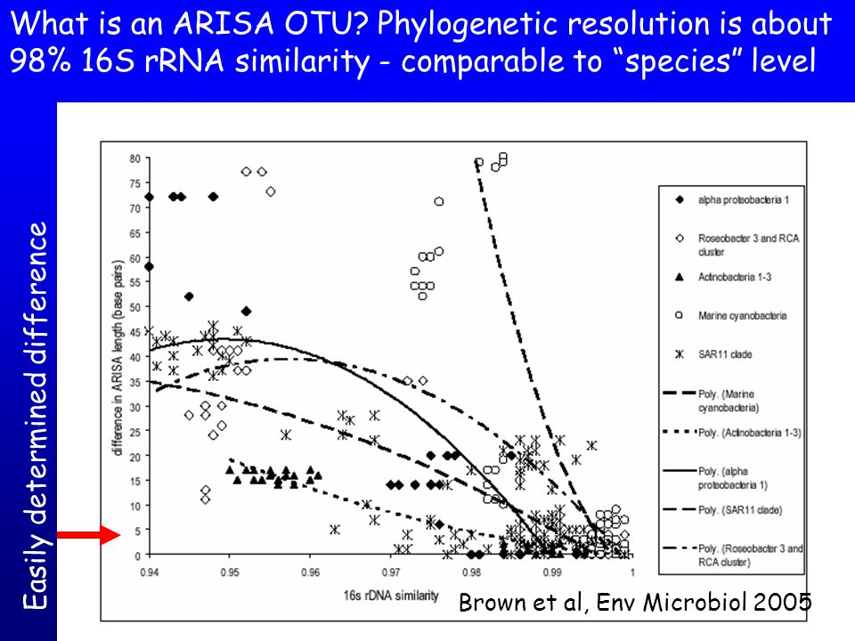 What is an ARISA OTU Phylogenetic resolution is about 98% 16S rRNA similarity - comparable to species level