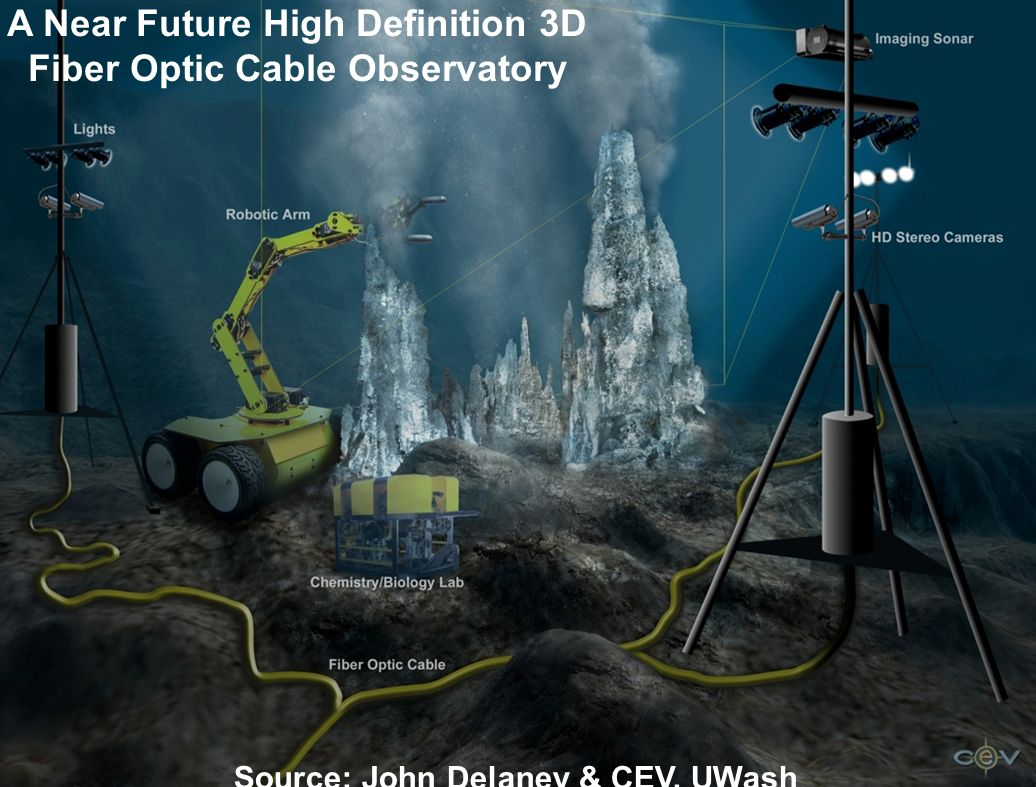 A Near Future High Definition 3D Fiber Optic Cable Observatory