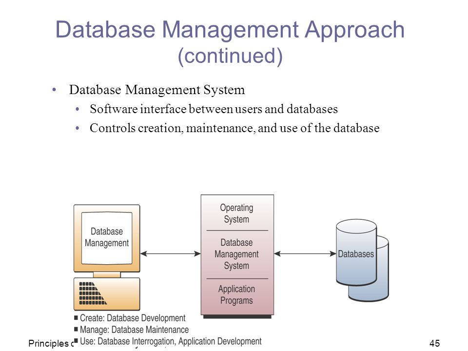 What Are Advantages and Disadvantages of Using a Database