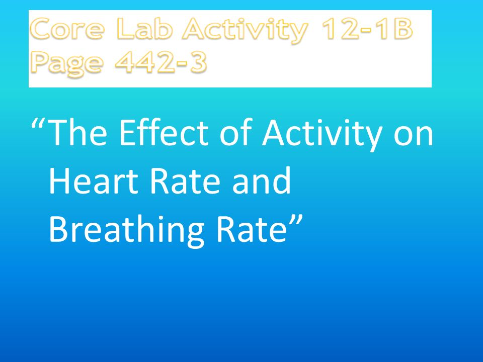 the effect of exercise on heart rate and breathing rate Homeostasis lab: the effects of exercise on homeostasis 31 points purpose why does an increase in heart rate and breathing rate accompany exercise 6.