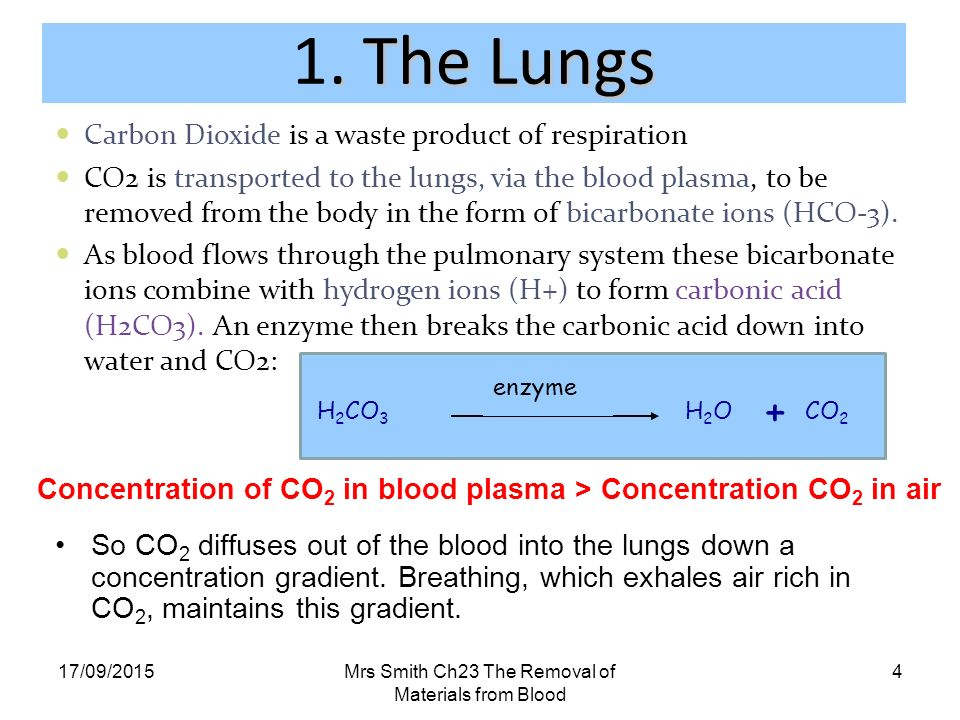 Carbon Dioxide Removal Systems : Unit the continuation of life ppt download