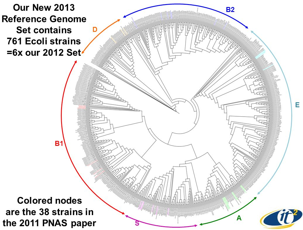 Our New 2013 Reference Genome Set contains 761 Ecoli strains