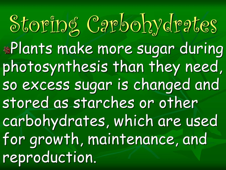 Storing Carbohydrates