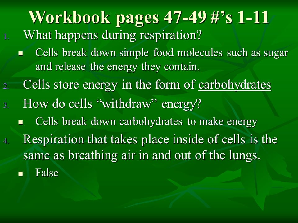 Workbook pages #'s 1-11 What happens during respiration