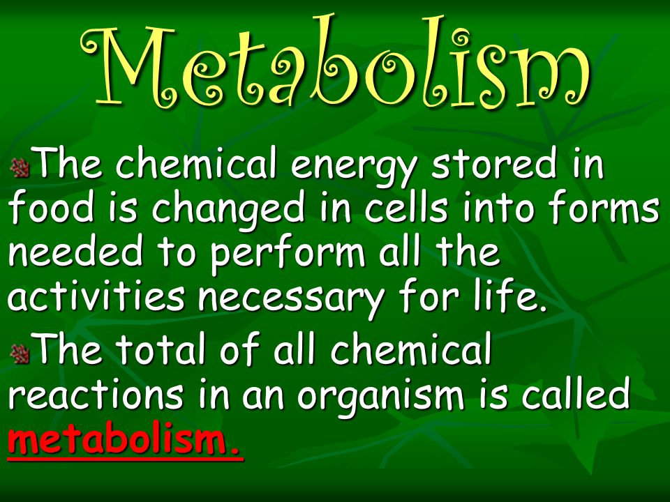 Metabolism The chemical energy stored in food is changed in cells into forms needed to perform all the activities necessary for life.