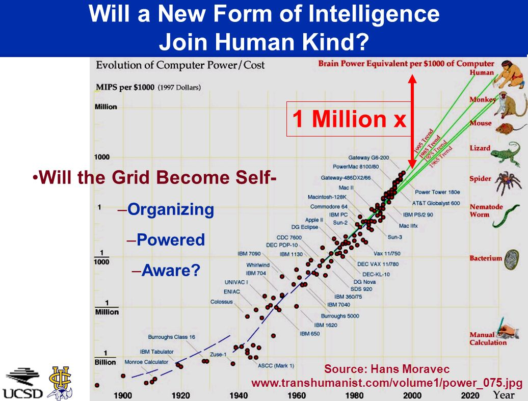 Will a New Form of Intelligence Join Human Kind