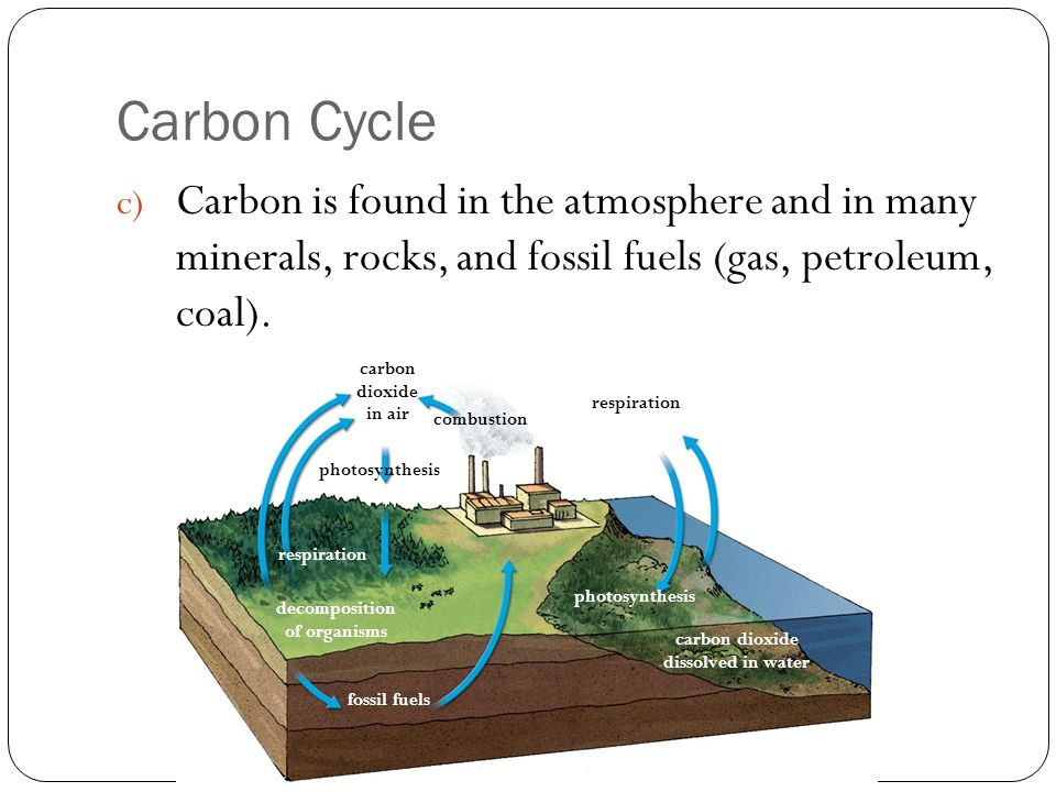fossil fuels and minerals Advertisements: natural resources: forests and fossil fuels (with diagram and maps) natural resources are the things nature gives us, for example, air, water, soil, sunlight, minerals.