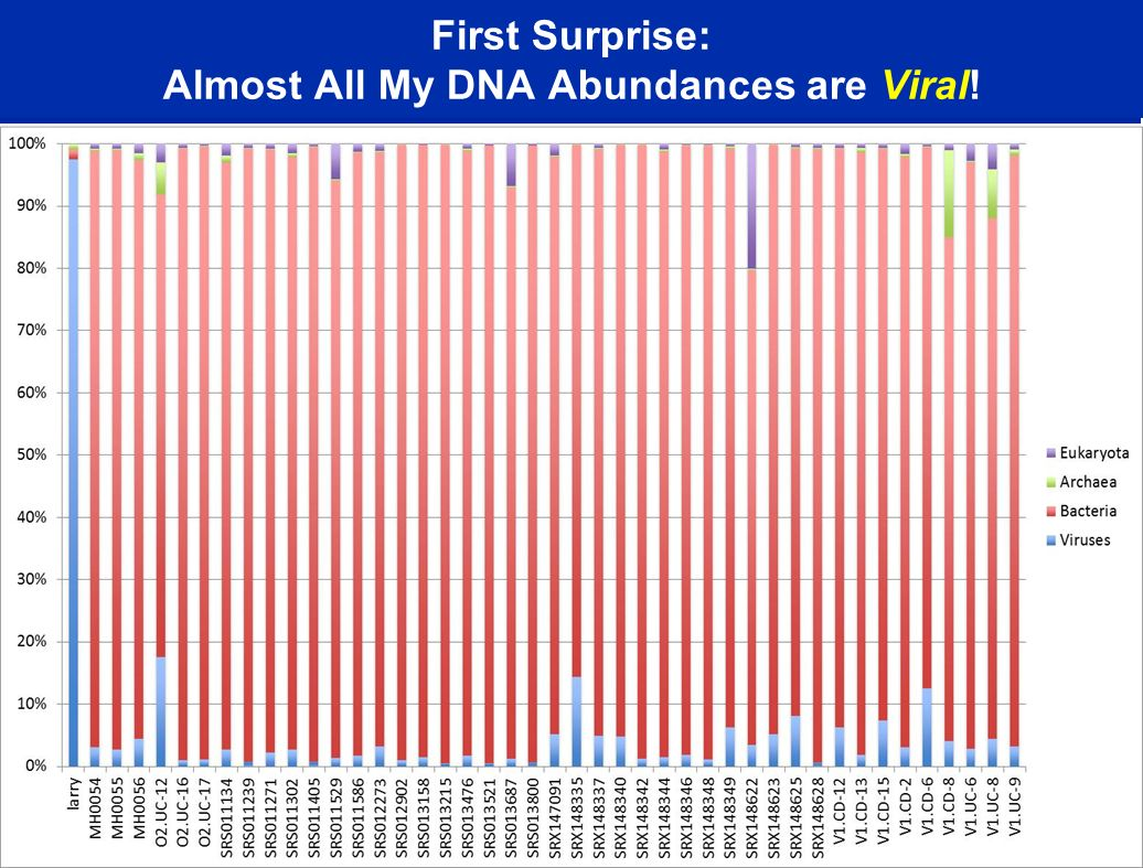 First Surprise: Almost All My DNA Abundances are Viral!