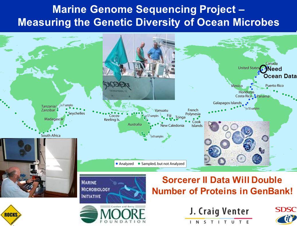 Sorcerer II Data Will Double Number of Proteins in GenBank!