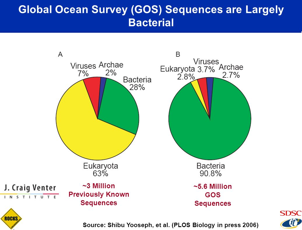 Global Ocean Survey (GOS) Sequences are Largely Bacterial