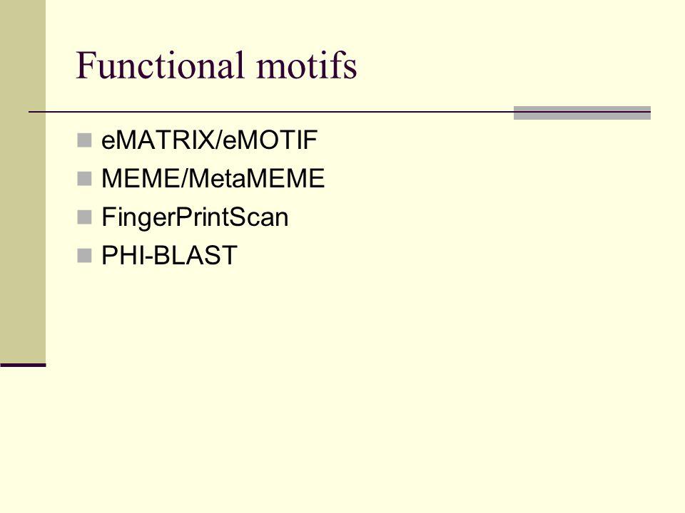 Functional motifs eMATRIX/eMOTIF MEME/MetaMEME FingerPrintScan