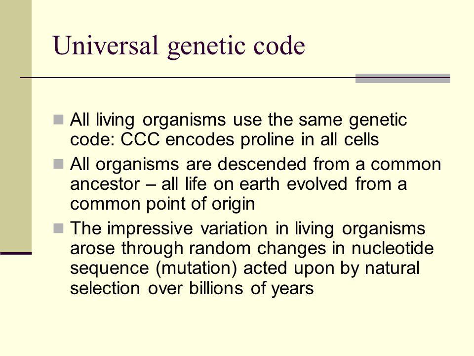 Universal genetic code