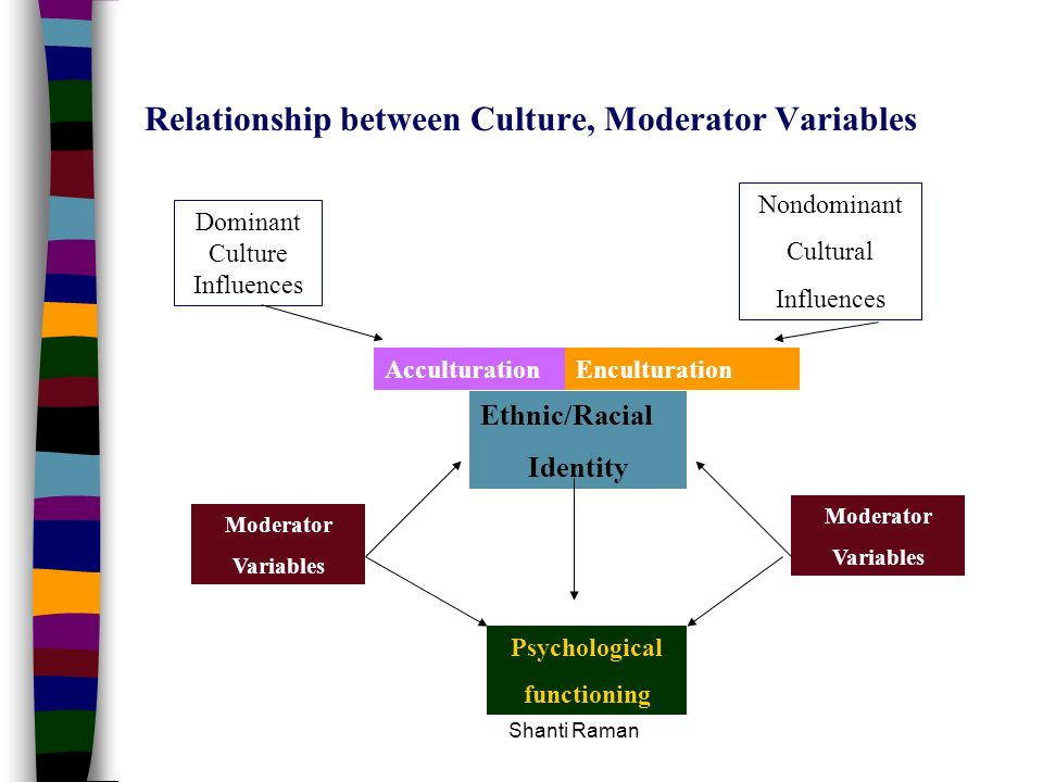 Relationship between Culture, Moderator Variables