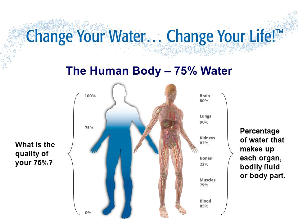 the human body and water Benefits of drinking water include relief from fatigue, heartburn, migraine, arthritis, and backaches it also aids in ph balance, and regulating body temperature.