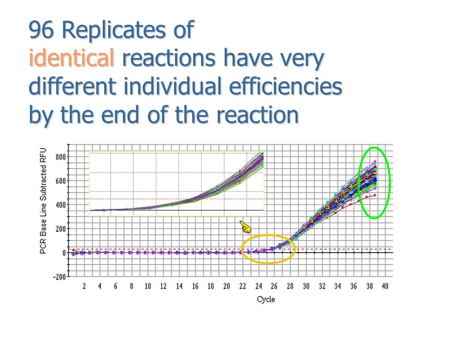 ' different reaction different ending The effect of different concentrations of glucose on investigating the effects of different the rate of reaction would increase with an.