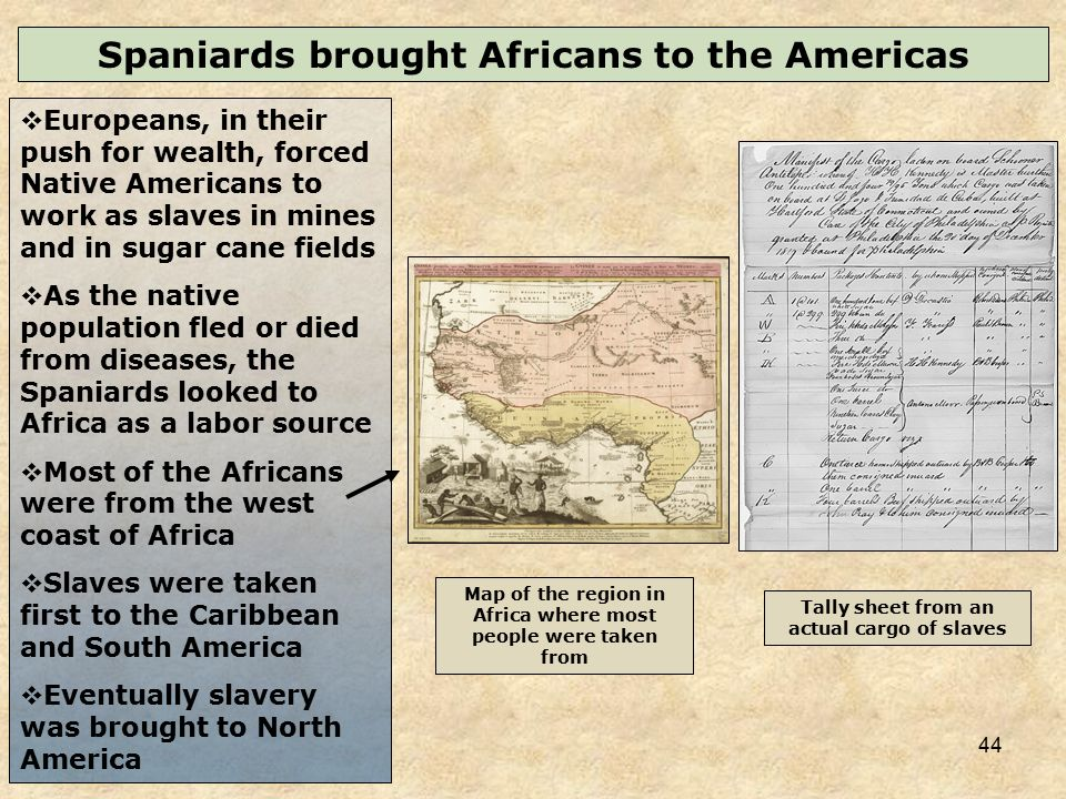 an analysis of europeans bringing slaves to north america In the americas, besides the considerable riches their free labor created for  others,  the slave trade was closely linked to the europeans' insatiable hunger  for  but this practice often encouraged the taking of prisoners for monetary  rewards  a study of the african reaction to european trade (oxford:  clarendon, 1970.
