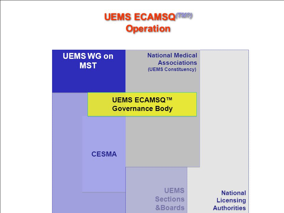 UEMS ECAMSQ(TM ) Operation
