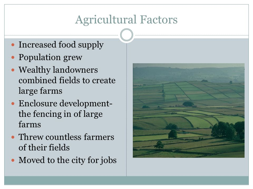 Agricultural Factors Increased food supply Population grew