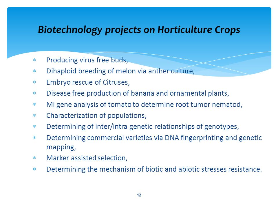 Biotechnology projects on Horticulture Crops
