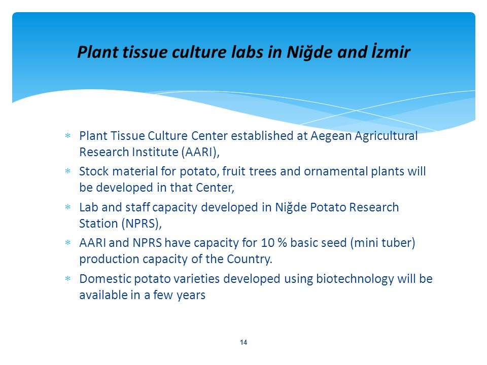 Plant tissue culture labs in Niğde and İzmir