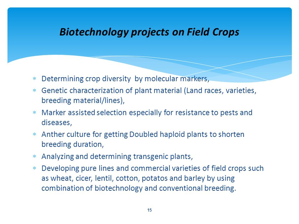 Biotechnology projects on Field Crops
