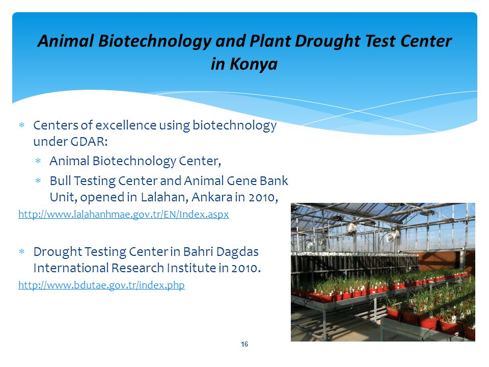 Animal Biotechnology and Plant Drought Test Center in Konya