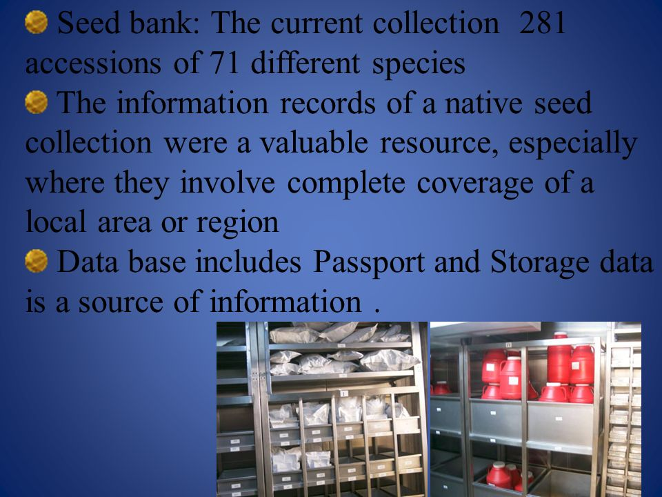 Seed bank: The current collection 281 accessions of 71 different species