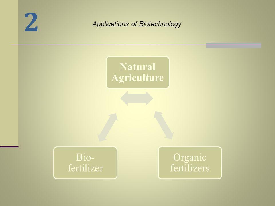 2 Natural Agriculture Organic fertilizers Bio-fertilizer