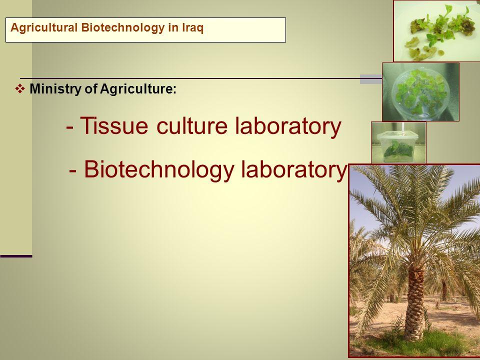 - Biotechnology laboratory