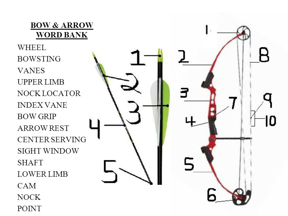 BOW & ARROW WORD BANK WHEEL. BOWSTING. VANES. UPPER LIMB. NOCK LOCATOR. INDEX VANE. BOW GRIP.