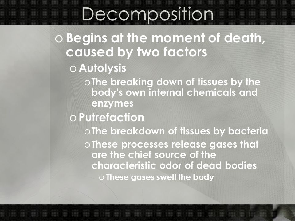 Decomposition Begins at the moment of death, caused by two factors