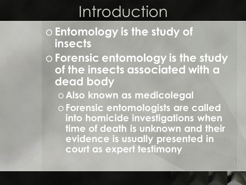 Introduction Entomology is the study of insects