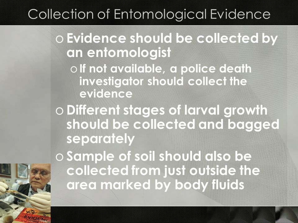 Collection of Entomological Evidence