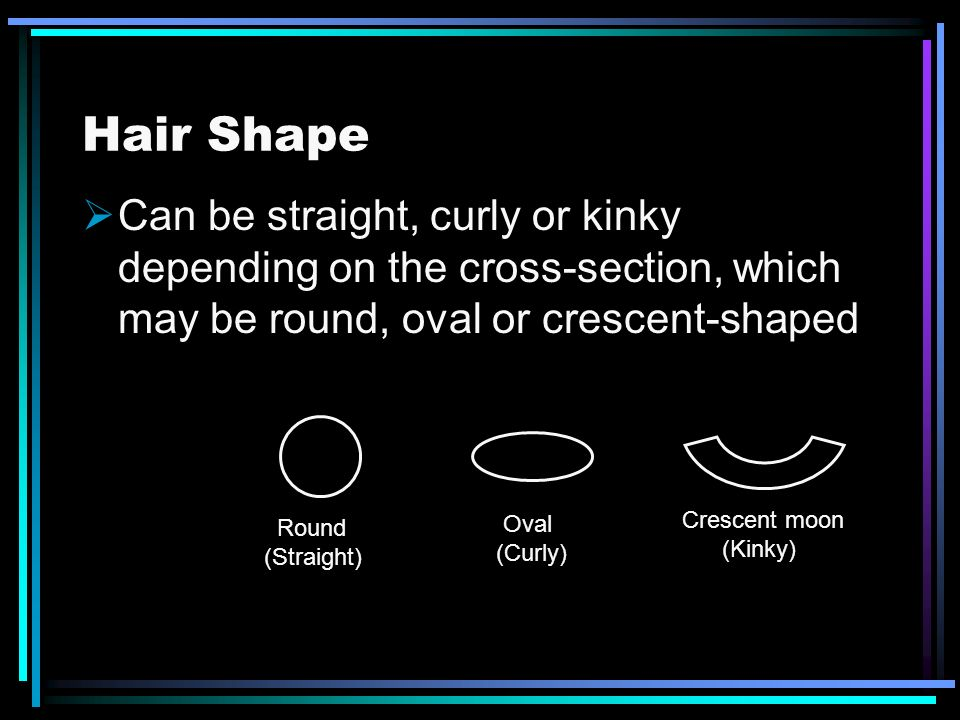 Hair Shape Can be straight, curly or kinky depending on the cross-section, which may be round, oval or crescent-shaped.