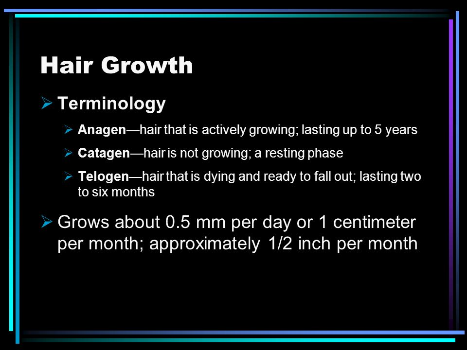 Hair Growth Terminology