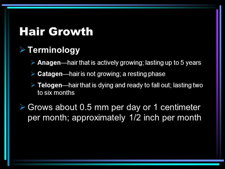 Hair Growth Terminology