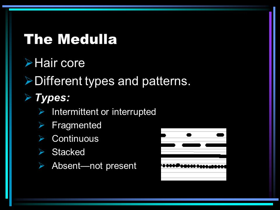 The Medulla Hair core Different types and patterns. Types: