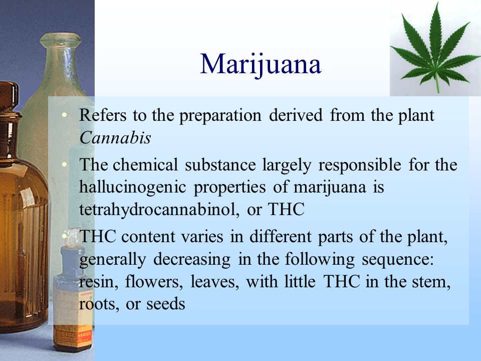 Marijuana Refers to the preparation derived from the plant Cannabis