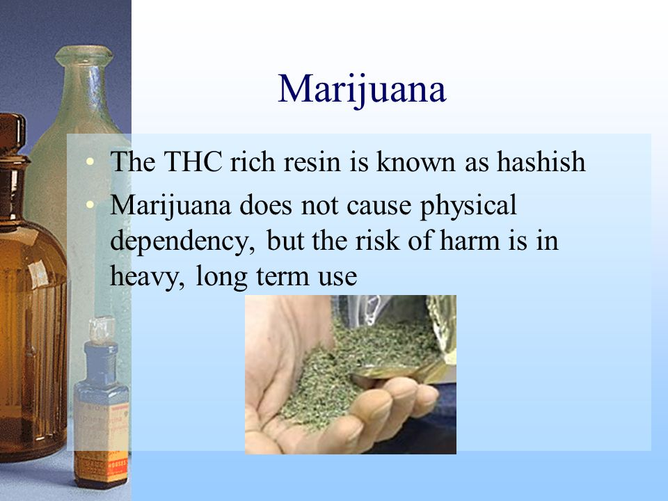 Marijuana The THC rich resin is known as hashish
