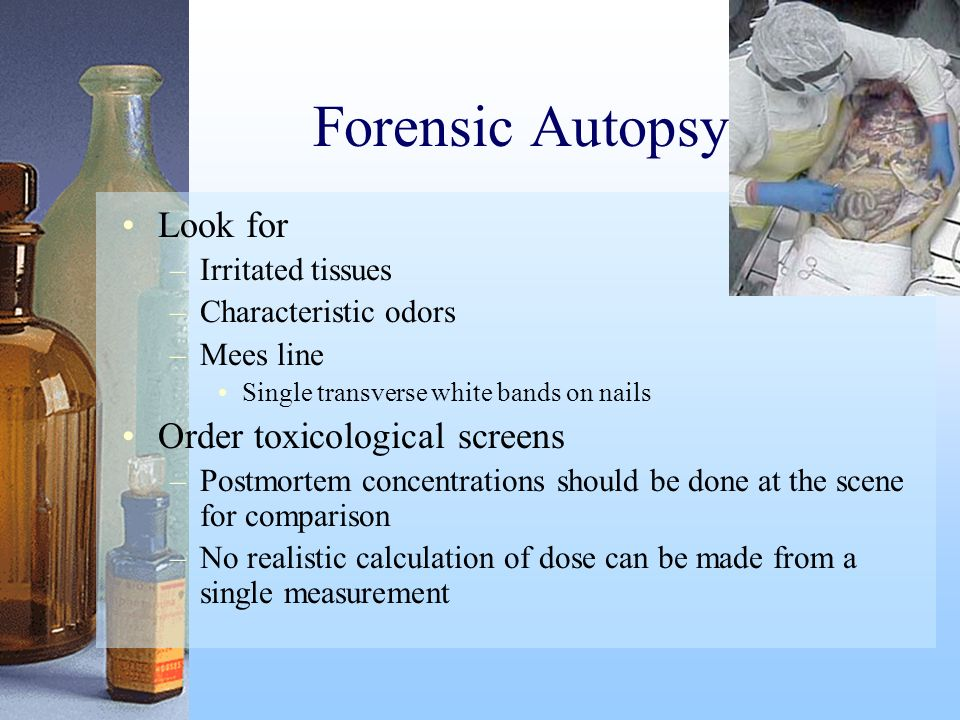 Forensic Autopsy Look for Order toxicological screens