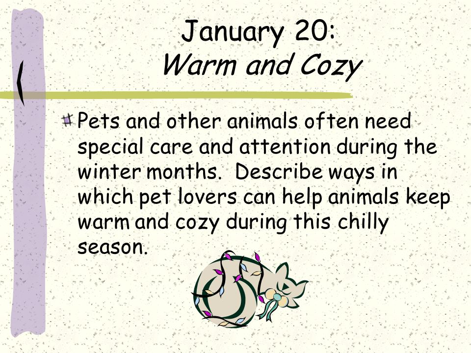 January 20: Warm and Cozy