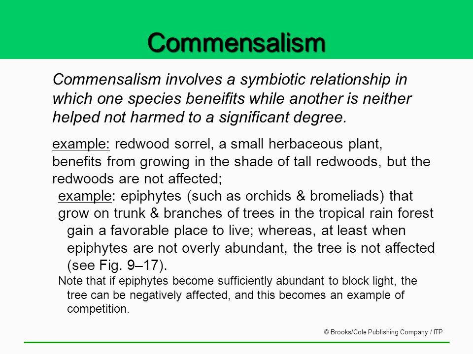 commensalism relationship in redwood forest
