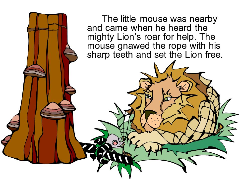 The little mouse was nearby and came when he heard the mighty Lion's roar for help.