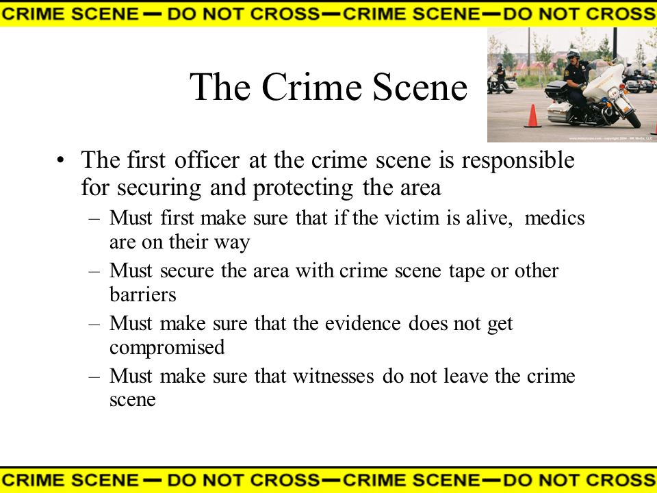 The Crime Scene The first officer at the crime scene is responsible for securing and protecting the area.