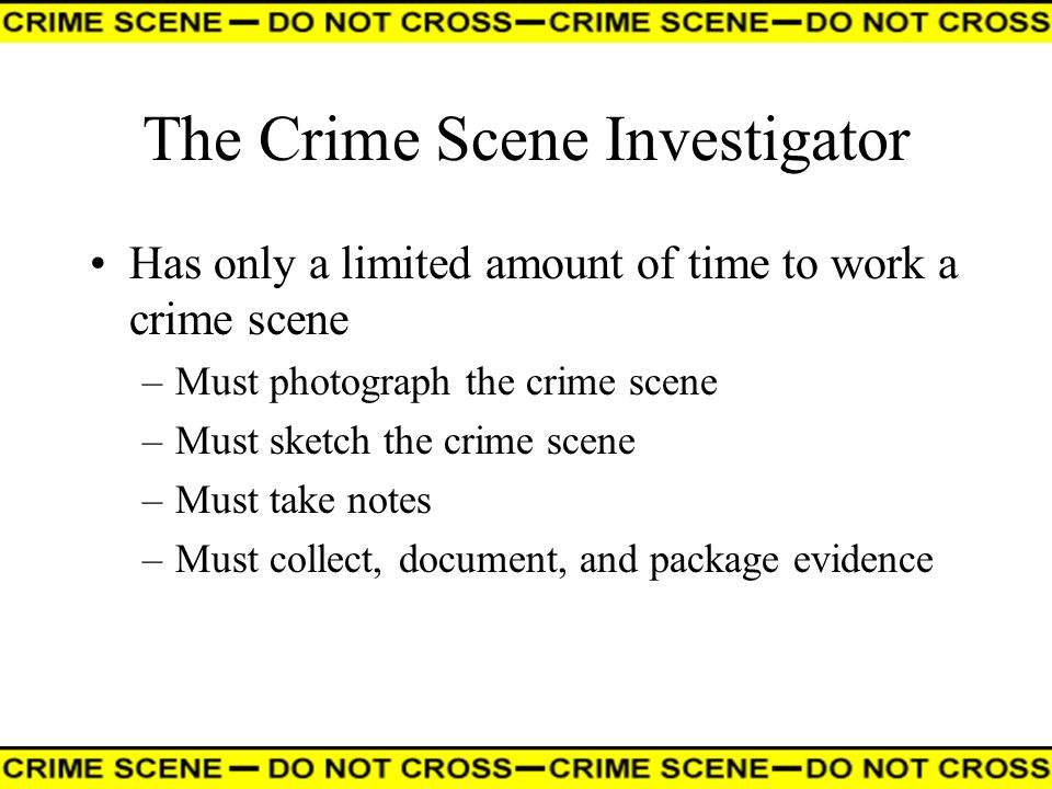 The Crime Scene Investigator