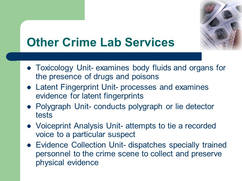 Other Crime Lab Services