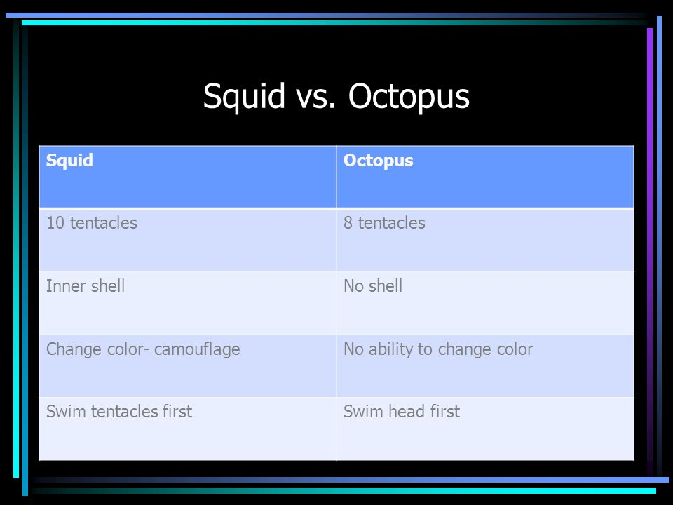 Squid vs. Octopus Squid Octopus 10 tentacles 8 tentacles Inner shell