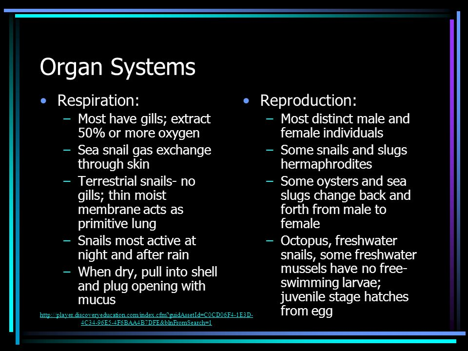 Organ Systems Respiration: Reproduction: