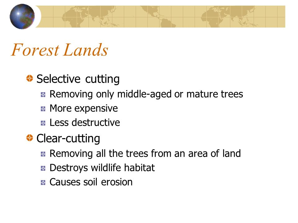 Forest Lands Selective cutting Clear-cutting